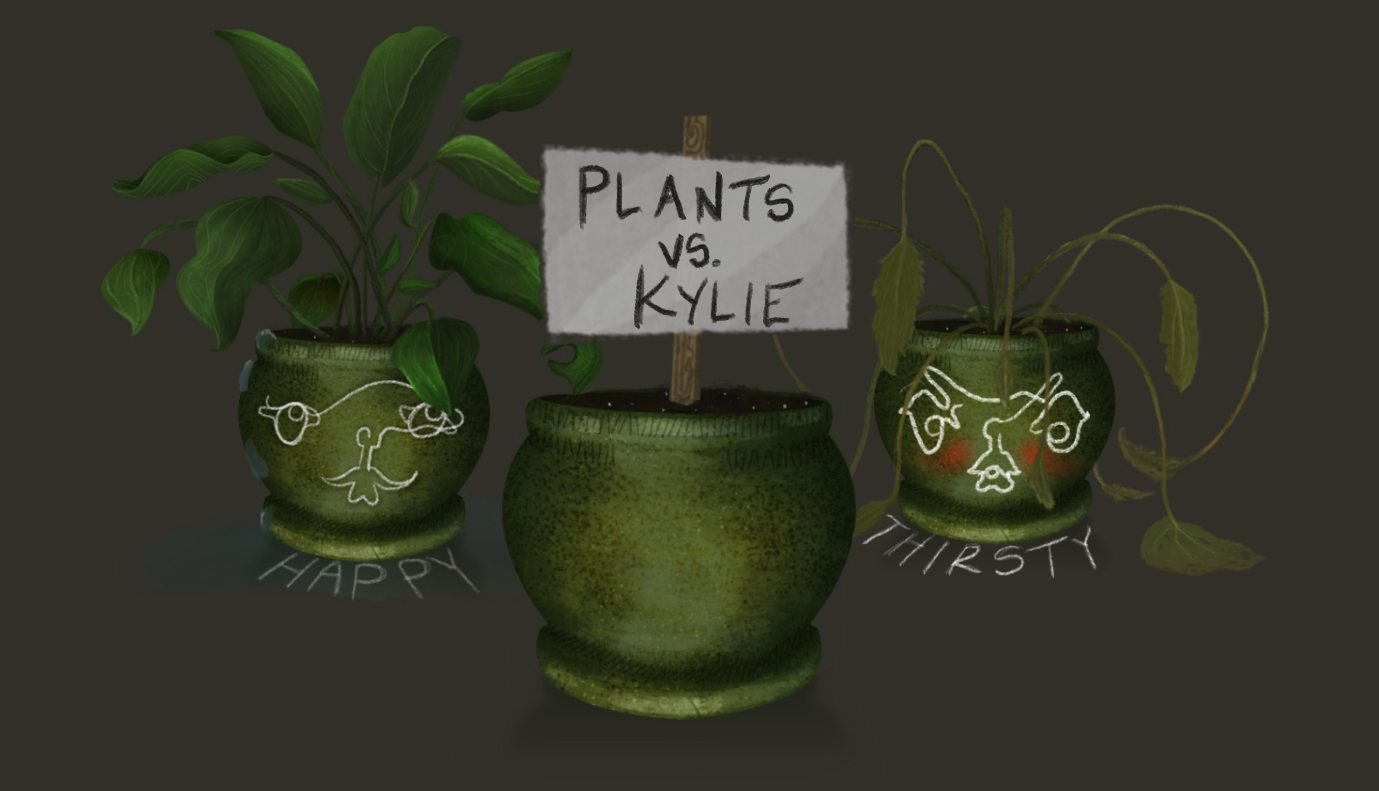 plantsvskylie