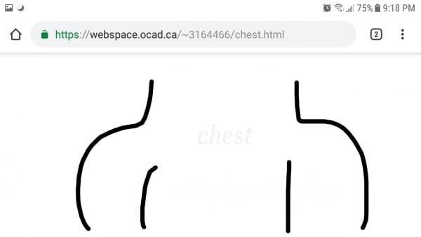 chest-pen