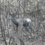 """Gerhard Richter, """"Stag (Hirsch)"""", 1963."""