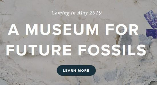 Museum for Future Fossils: Graduate Summer School