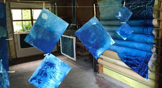 cyanotypes in brick studio