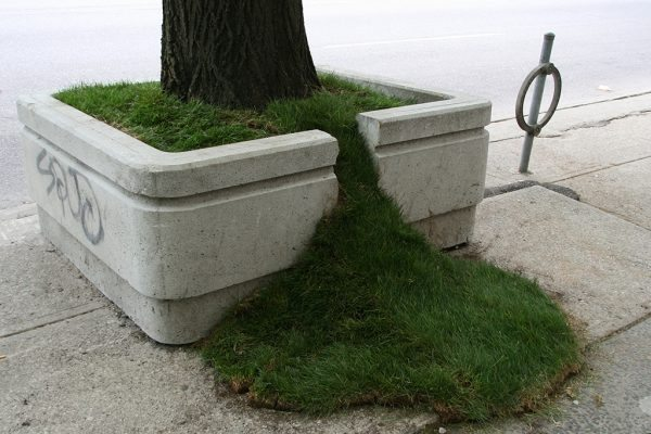 Outside the Planter Boxes – Grass Spill, 2011. Sean Martindale artist. Photo by Sean Martindale
