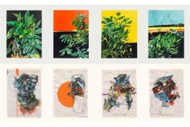 Manny Trinh: Nature Series, 2017–present and Passports Series, 2016–present. (Images courtesy of the artist.)