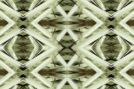 Vanessa Dion Fletcher, Shifting Focus, digital video, 10:00 minutes, colour, sound, no language, 2019
