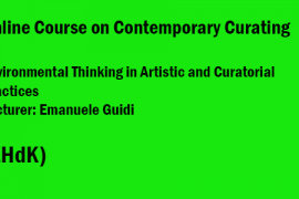 Online Course in Contemproary Curating ZHdK