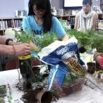 photo of people planting herbs into pop bottles