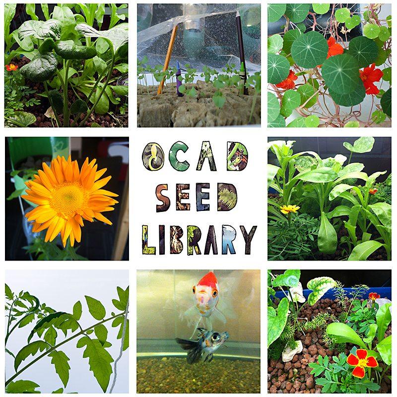 OCAD Seel Library Branch Launch; TSL Branch