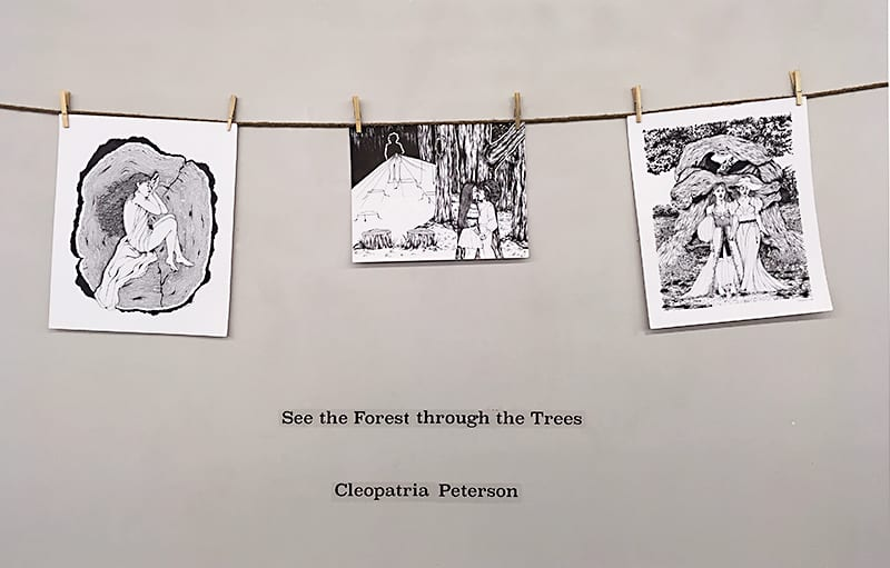 See The Forest Through The Trees, Cleopatria Peterson, 2018