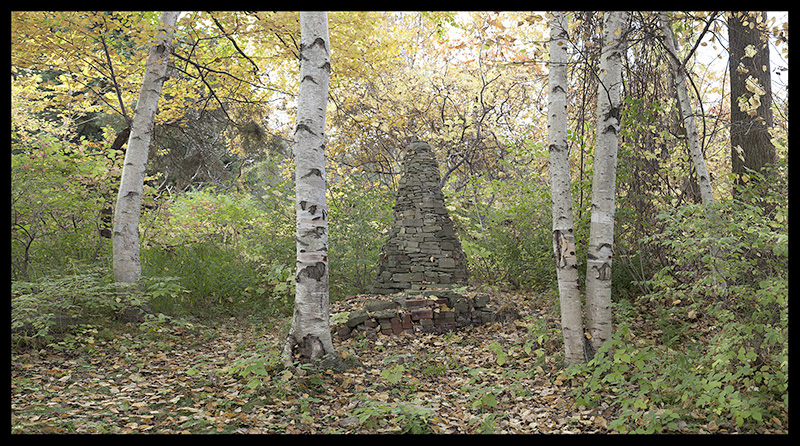 "April Hickox, Wood land pillar, Archival ink jet print, artist proof, 2014, 24"" x 39"", Courtesy of the artist & Katzman Contemporary, Estimate: $3,900"