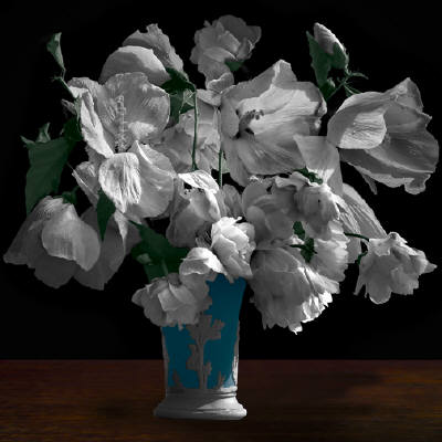 """Elaine Waisglass, """"Hibiscus"""" (Rose of Sharon """"David"""") Limited edition ink jet print, archival inks on archival Arches Watercolour Paper, edition 1 of 12 2014, 42 x 42 inches Courtesy of the artist and Roberts Gallery Estimate: $5,500"""