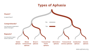 Diagram Showing Types of Aphasia