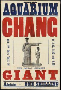 Royal Aquarium: Chang the Great Chinese Giant, 1880