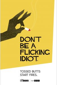 don-t-be-a-flicking-idiot-poster