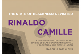 Rinaldo Camille: The State of Blackness Revisted