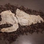"""Moulting"" Zoë Santo (latex, pins, and leaves)"