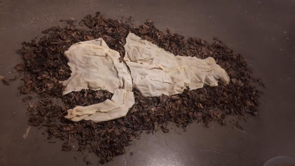 """""""Moulting"""" Zoë Santo (latex, pins, and leaves)"""